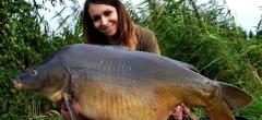 آشنایی با روش های صید ماهی کپور